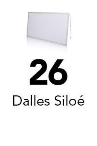 26 dalles siloé