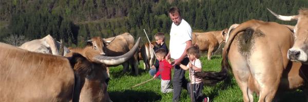 Visuel élevage dans les champs